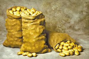 Должник спрятался от судебных приставов в мешке с картошкой