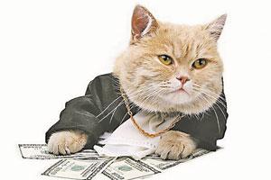 В Италии кот получил в наследство 30 тысяч евро