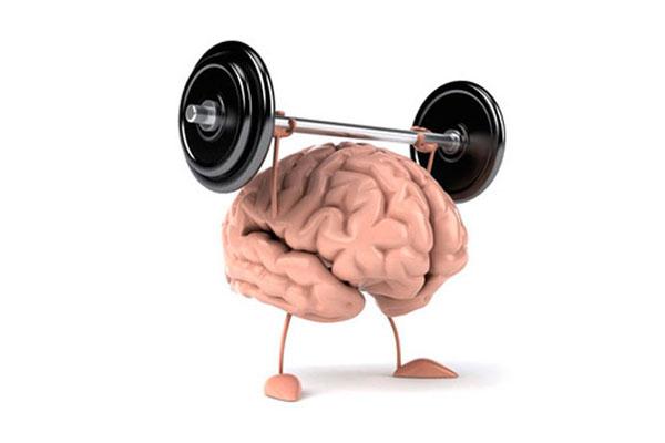 Дієта для мозку
