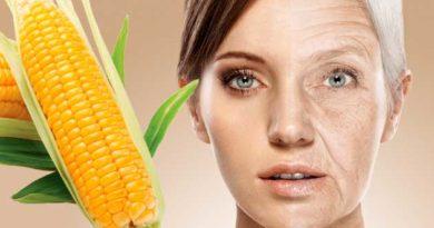 кукурудза від старіння