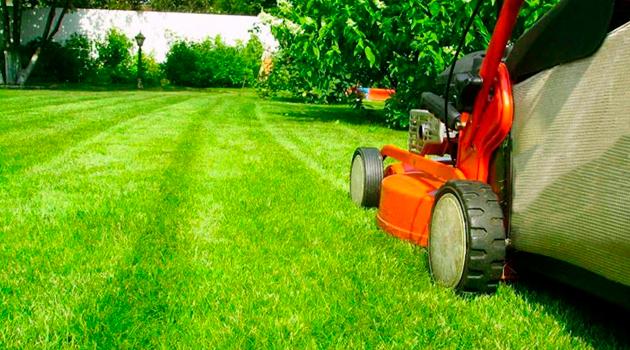 Стрижем газон правильно