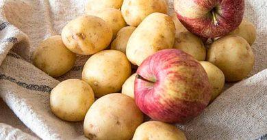 Щоб краще зберігалася картопля