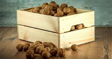 урожай горіхів