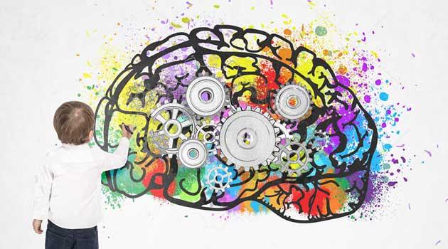 Коли найкраще працює мозок