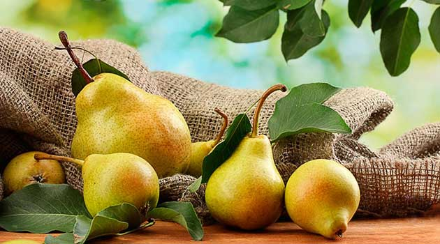 Лікувальні властивості груші