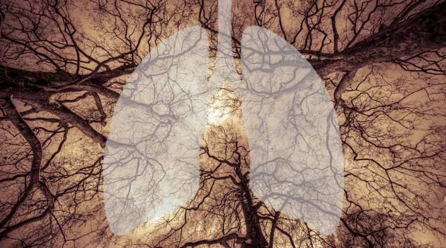 здоров'я легень
