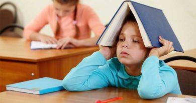Які послуги можуть бути платними у школах і дитячих садах