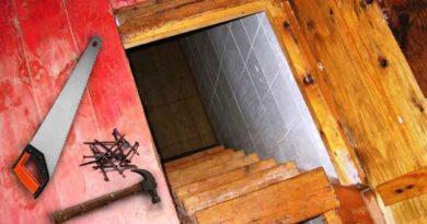 Нові двері до погреба