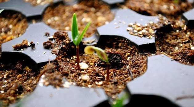 Проморожування ґрунтосуміші