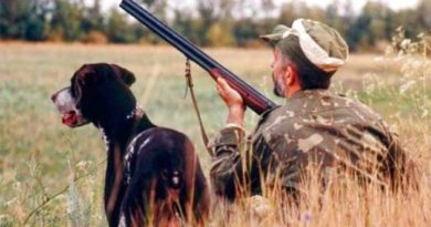 Стартує сезон полювання