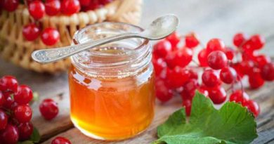 Калина з медом