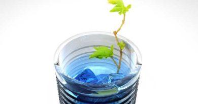 Жива вода для насіння