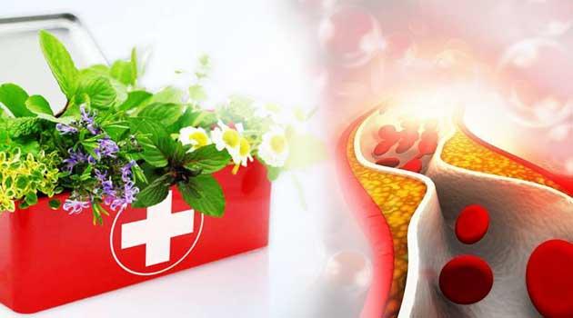 Народні рецепти від атеросклерозу