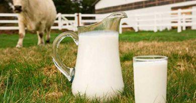 Щоб не гірчило молоко