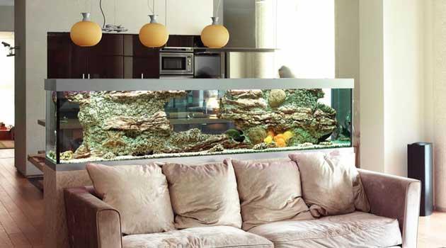 Вибираємо акваріум правильно