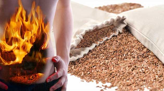 Насіння льону позбавить печії