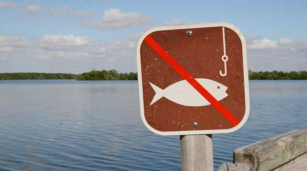 Заборонили вилов риби