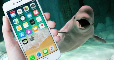 Білуха повернула власнику iPhone