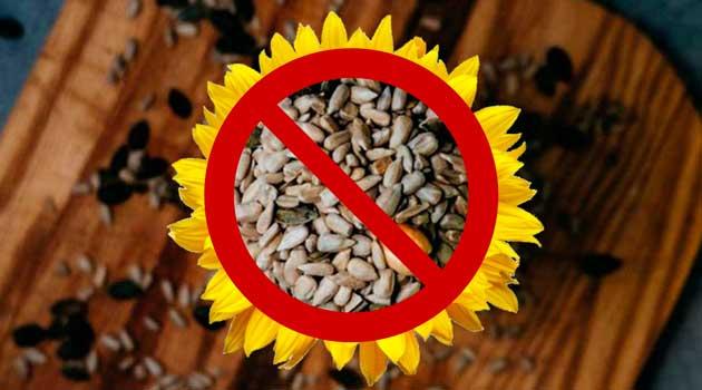 Кому не можна їсти насіння