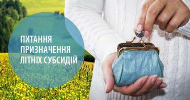 Питання призначення літніх субсидій