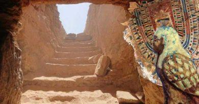 У Єгипті виявили гробницю з цінними артефактами
