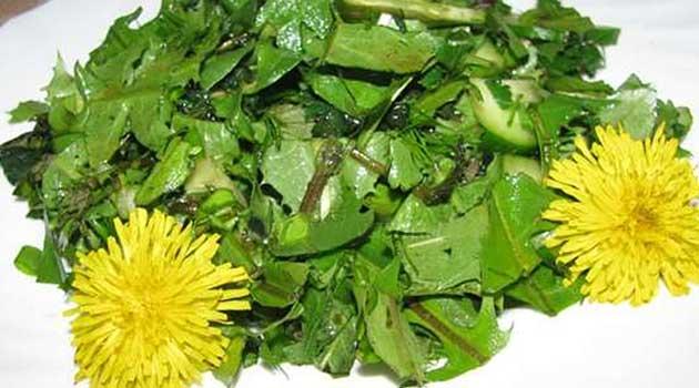 Салат із кропиви та кульбаби