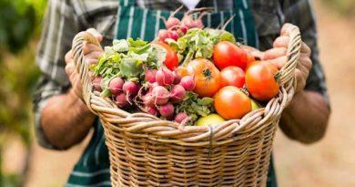 Звідки в Україну завозять харчові продукти