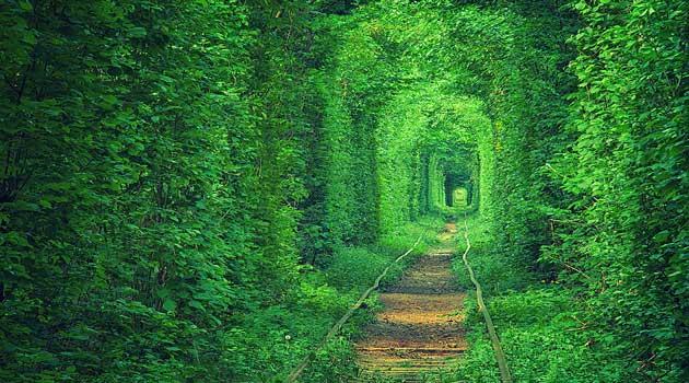 Загадковий тунель любові