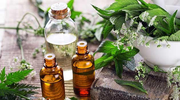 Готуємо ліки з рослин