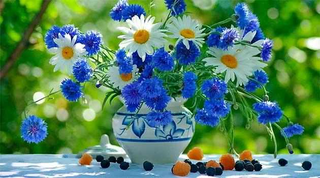 Букет квітів