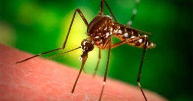 Відлякати комарів