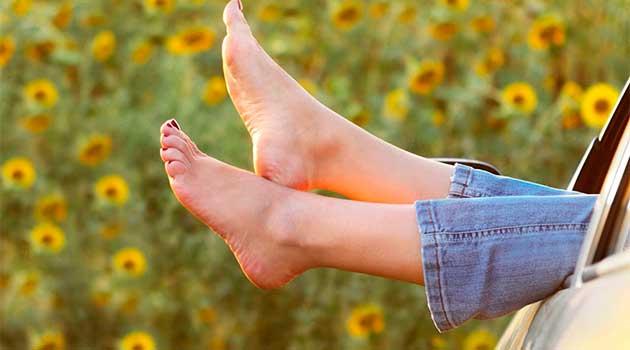 Кульбаба сприяє поліпшенню кровообігу в ногах