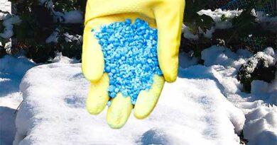 Вносимо добрива по снігу