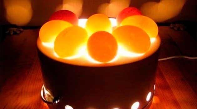 Овоскоп інкубаційних яєць