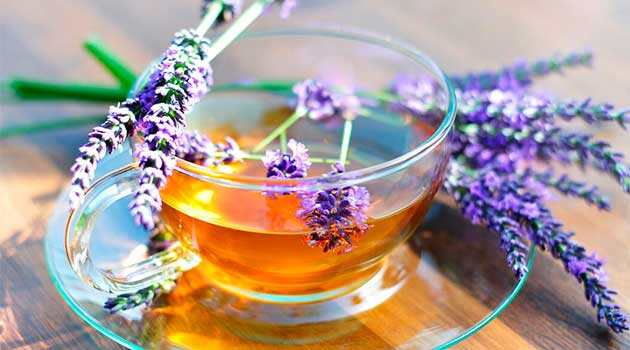 Чай з лаванди