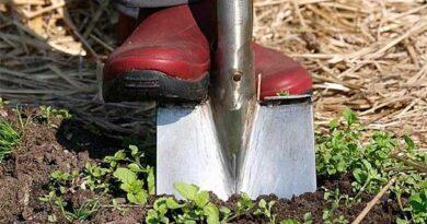 Як заточити лопату?