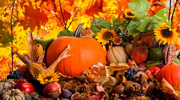 Дари осені